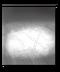 C186 Dolls secret i02 Picture footprints