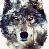 Only8wolf