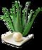 C250 Healing incense i04 Aloe vera