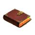 C491 Mysterious grimoires i05 Subtle bodies manuscript