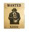 C404 Criminals on the loose i02 Fraudster's poster