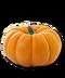 C262 Pumpkin soup i01 Pumpkin