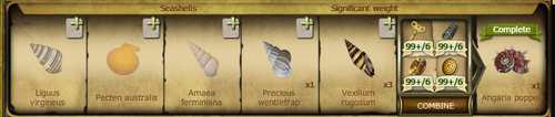 C293 Seashells (new) cropped