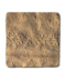 C047 Animal Tracks i03 Lizard Tracks