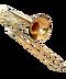 C124 Wind Instruments i05 Trombone