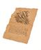 C385 Ancient Manuscript i05 Chapter V of the Manuscript