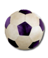 C014 Athletes Equipment i01 Soccer ball.png