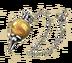 C612 Pendulums of Magic i04 Energy pendulum