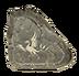 C593 Magic tablet i04 Unknown bird