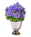 C009 Fragrant Flowers i02 Violets.png