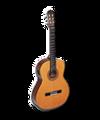 C023 Beautiful Music i02 Guitar.png