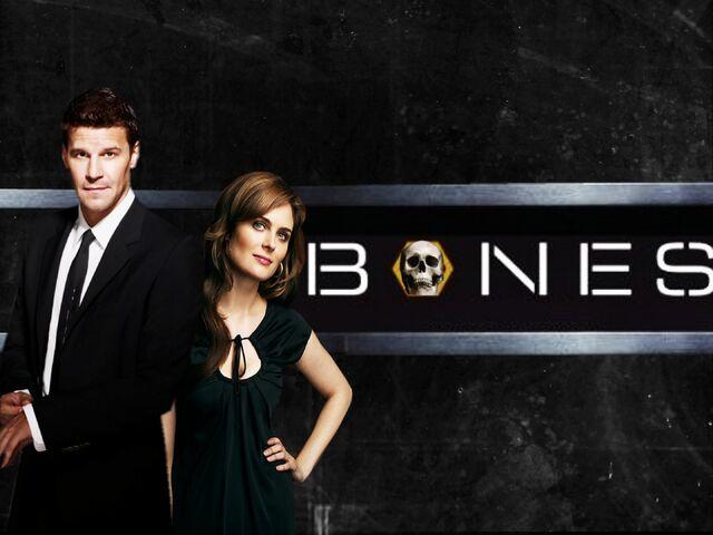 File:Bones-bones-7803936-2240-1680.jpg