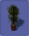 Smallplant