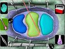 File:Alienautopsy.jpg