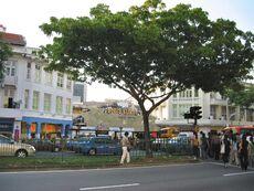 BugisStreet016