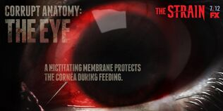 Corrupt-Anatomy-The-Eye-the-strain-fx-38643281-1024-512