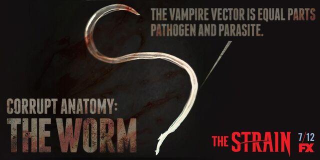 File:Corrupt-Anatomy-The-Worm-the-strain-fx-38617382-1024-512.jpg
