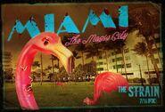 Miami-pc