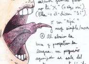 Del-toro-notes-1