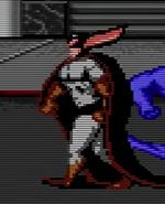 Diefledermausvideogame