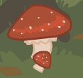 Mushroom comparison