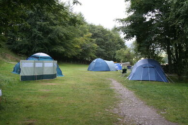 Camp Site Bobby