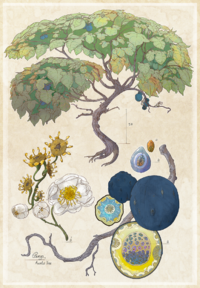 Blue Fruit Tree by Enuryn