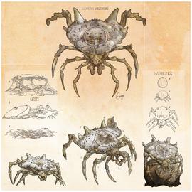 Shield Spider by Enuryn