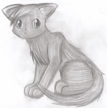 Orpheus Chibi Cat