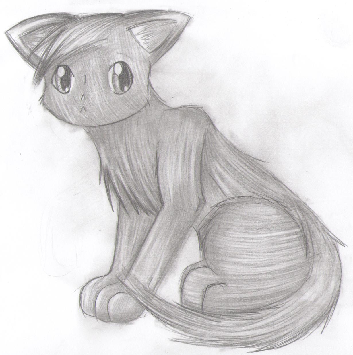 Orpheus   The Warrior Cats Roleplay Wiki   FANDOM powered ...  Warrior Cat Chibi