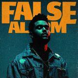 False Alarm (song)