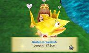 WikiGoldenCrownfish