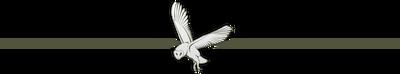 Owl divider
