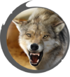 Hud avatar mexican wolf