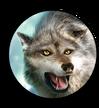 Hud avatar grey wolf