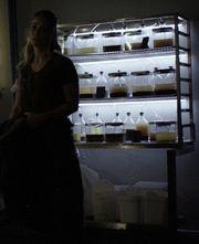 501 harper algae farm