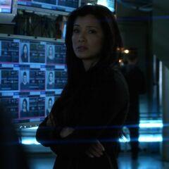 Callie vor den Monitoren