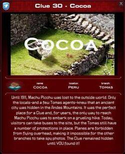300px-Cocoa