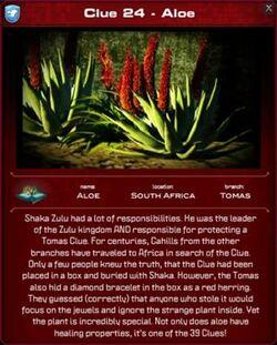 300px-Aloe