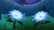S2e10a moon blooms