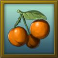 ITEM fruit.png
