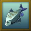 ITEM fish.png