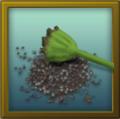 ITEM poppy seeds.png