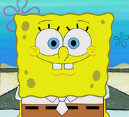 SpongeBob SquarePants(copy)0