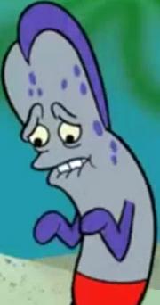 Sheldon Fish