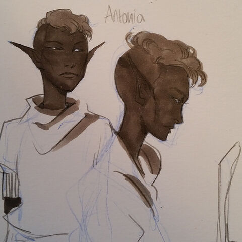 Antonia by <a rel=