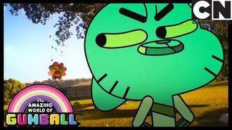 The Flower Gumball Cartoon Network
