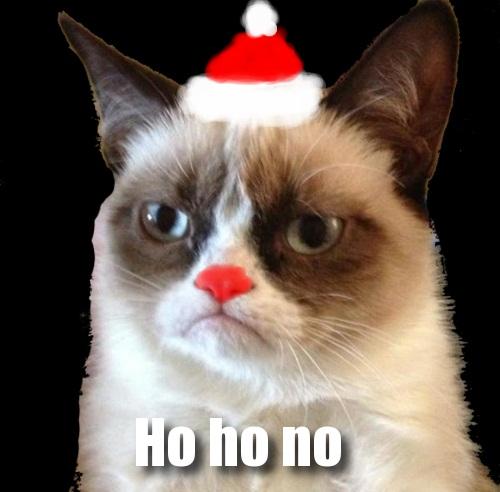 latest?cb=20121222075542 image holiday grumpy cat internet meme jpg the amazing world of
