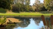 GB416ORIGINSPT1 Sc077 BGMatte Park Pond v02retake