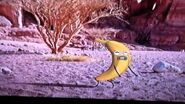 Joe the Banana - In the Desert